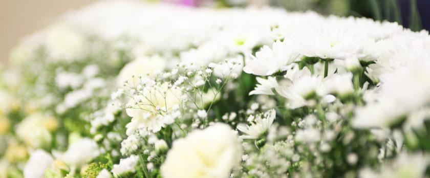 本日の葬儀 お通夜、お葬式のお知らせ